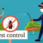 Advantages Of Local Pest Control Service