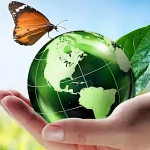 Environmental Friendly Pest Control